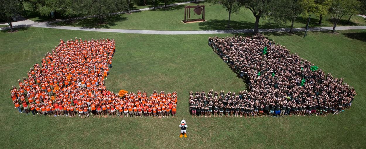 Careers Human Resources University Of Miami