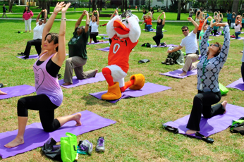 Benefits and Wellness | Human Resources | University of Miami